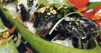 Hướng dẫn cách làm cá lóc hấp bầu tuyệt ngon