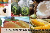 10 loại trái cây đặc sản thơm ngon Nam Bộ