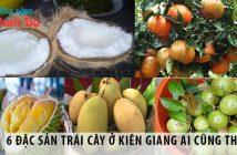 6 đặc sản trái cây ở Kiên Giang ai cũng thích mê