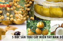 5 đặc sản trái cây miền Tây Nam Bộ nhất định phải thử