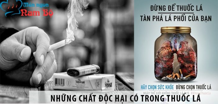 Chất độc hại nhất trong thuốc lá liệu có phải là Nicotine?