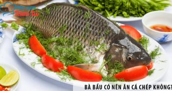 Bà bầu ăn cá chép được không? Có tốt không?