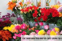 Các shop hoa tươi đẹp và chất lượng tại Biên Hòa